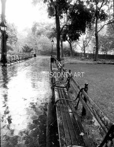 Falling Rain at Union Square_NYC